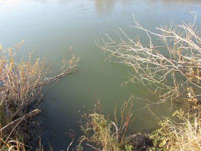 коряжник - лучшее место для осенней рыбалки