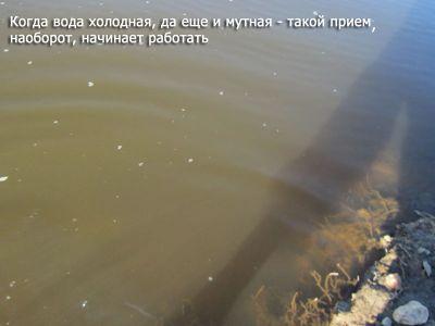 в реке мутная вода
