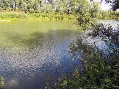 место на реке, где может быть рыба